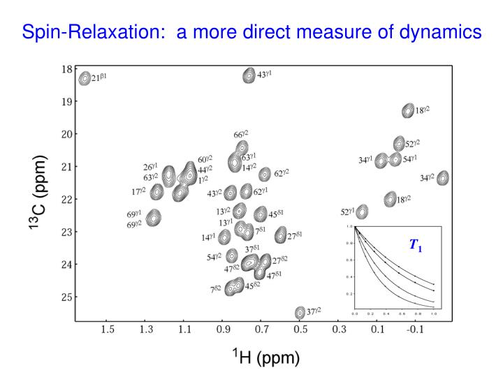 Spin-Relaxation:  a more direct measure of dynamics