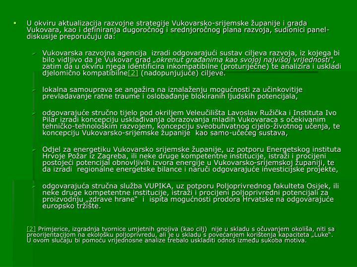 U okviru aktualizacija razvojne strategije Vukovarsko-srijemske županije i grada Vukovara, kao i definiranja dugoročnog i srednjoročnog plana razvoja, sudionici panel-diskusije preporučuju da: