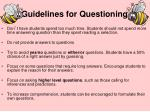 guidelines for questioning