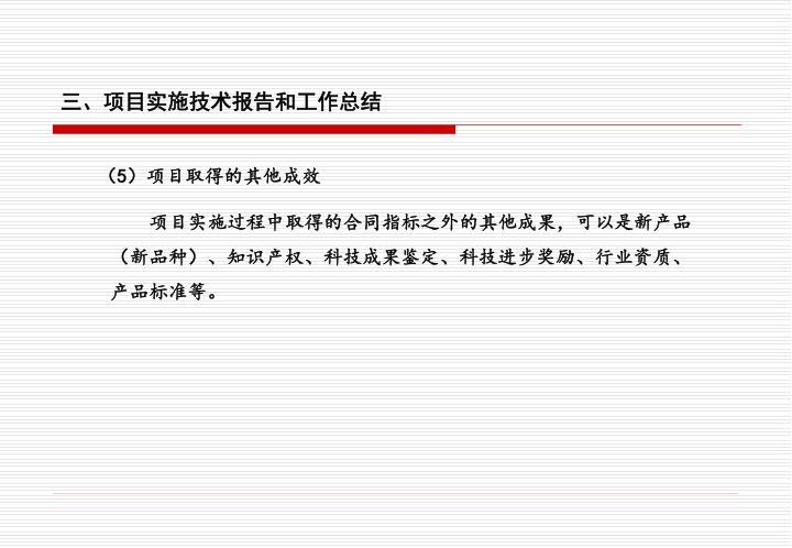 三、项目实施技术报告和工作总结