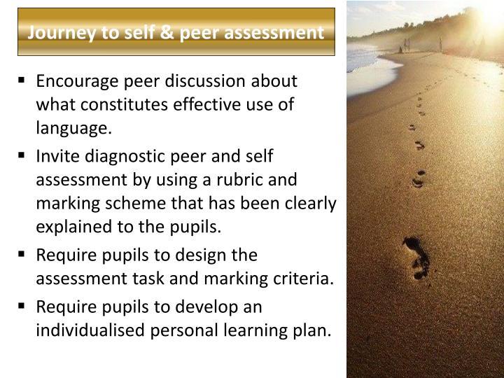 Journey to self & peer assessment