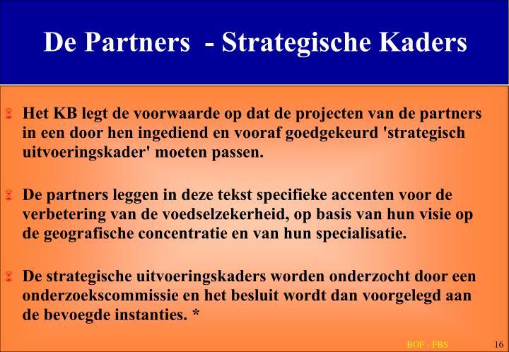 De Partners  - Strategische Kaders