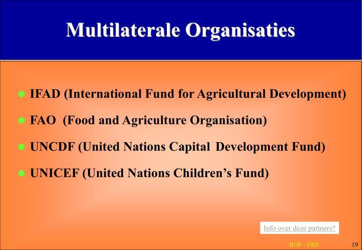 Multilaterale Organisaties