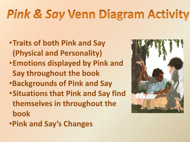 Pink & Say