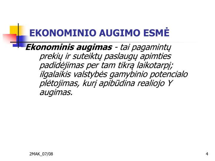 EKONOMINIO AUGIMO ESMĖ