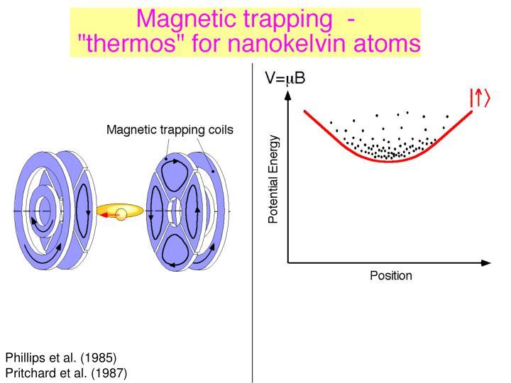 Magnetic trap setup (GIF)
