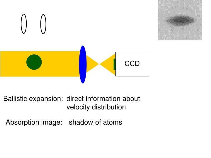 Absorption image:  shadow of atoms