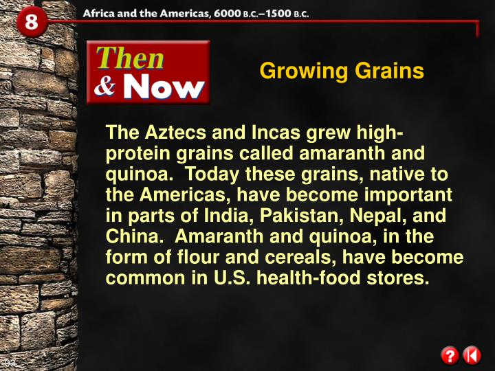 Growing Grains