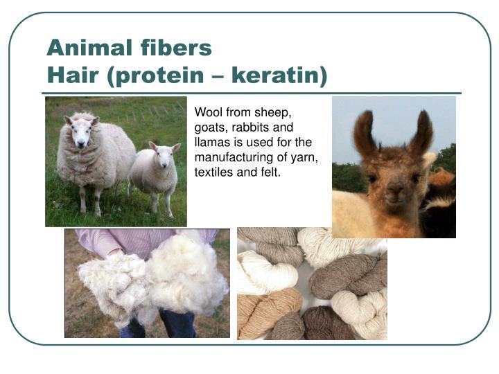 Animal fibers