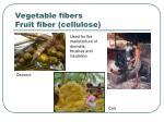 vegetable fibers fruit fiber cellulose