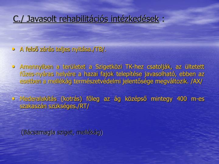 C./ Javasolt rehabilitációs intézkedések