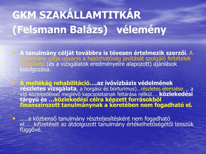 GKM SZAKÁLLAMTITKÁR     (Felsmann Balázs)   vélemény
