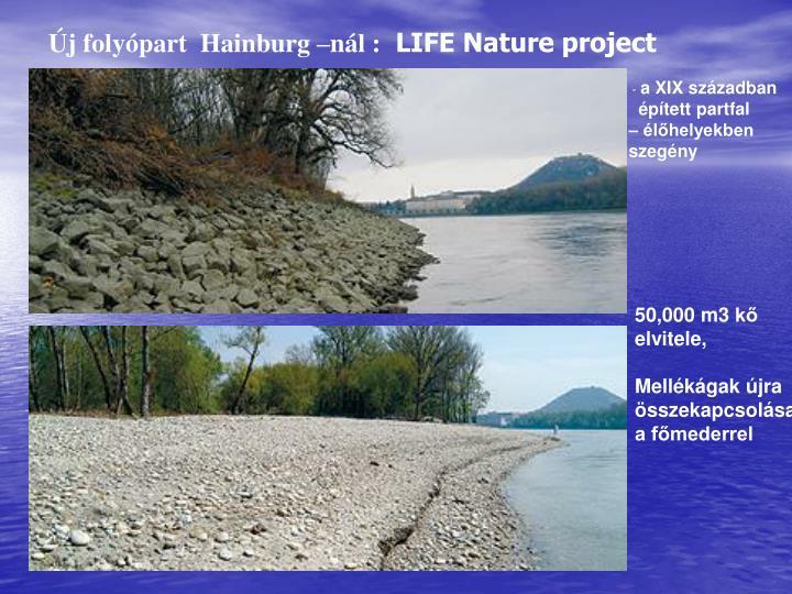 Új folyópart  Hainburg –nál :