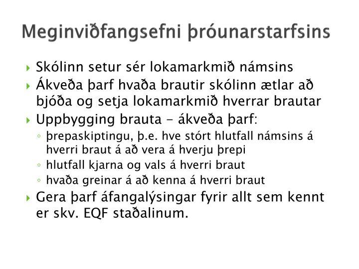 Meginviðfangsefni þróunarstarfsins