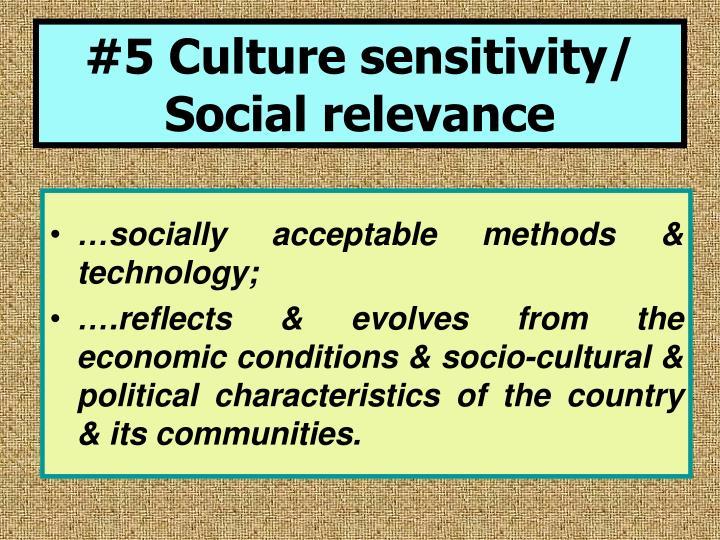 #5 Culture sensitivity/