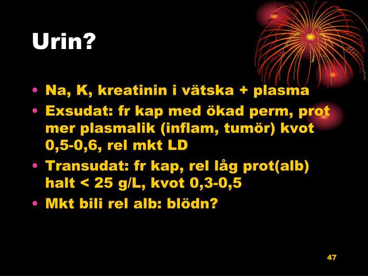 Urin?