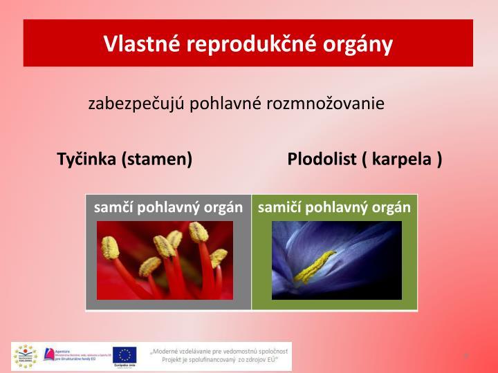 Vlastné reprodukčné orgány