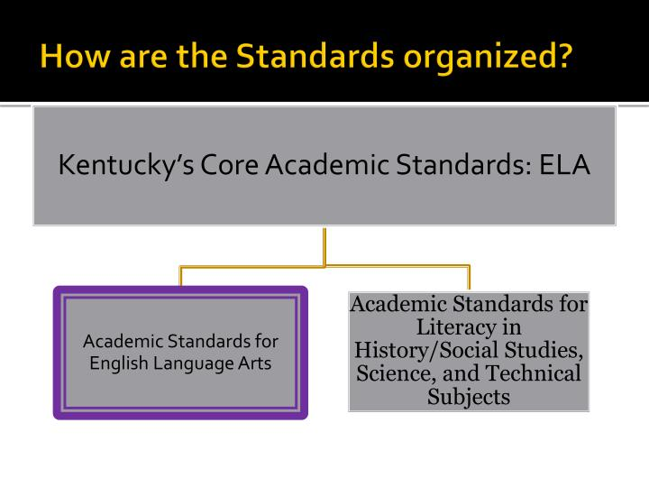 How are the Standards organized?