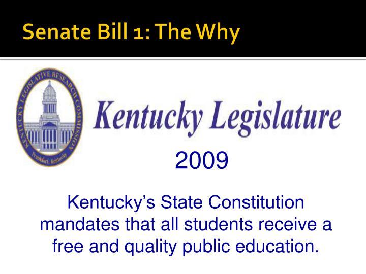Senate Bill 1: The Why