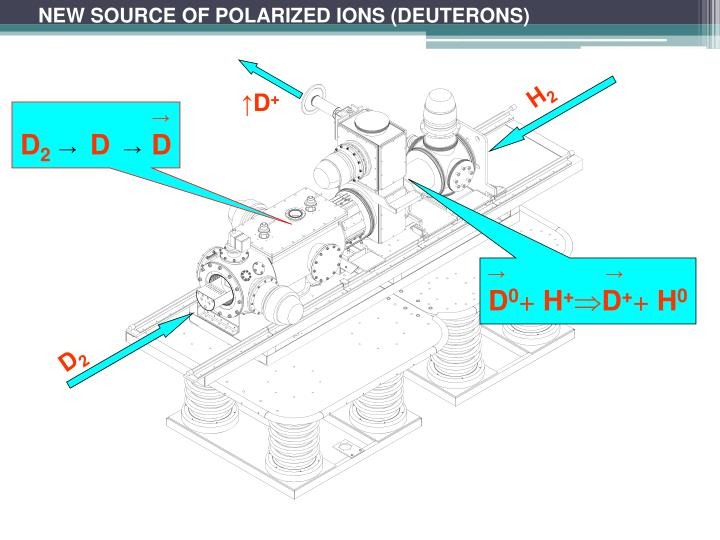 NEW SOURCE OF POLARIZED IONS (DEUTERONS)