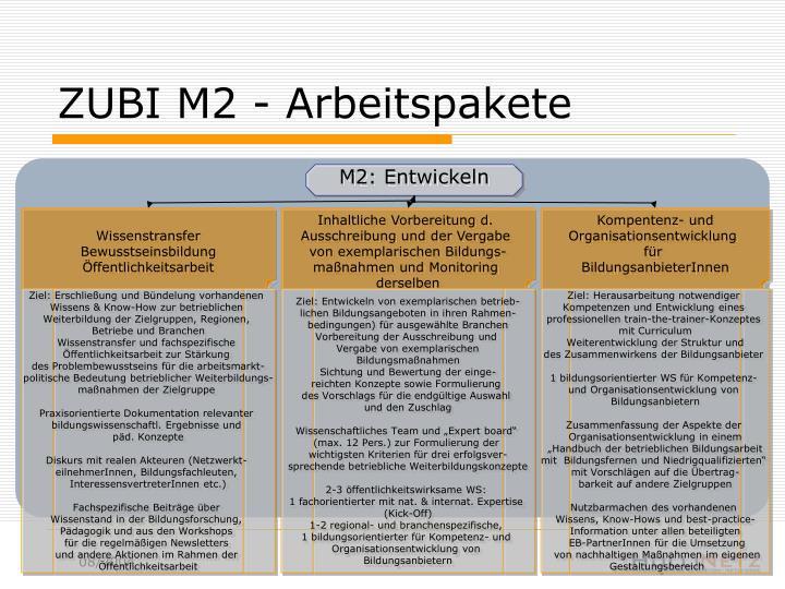 ZUBI M2 - Arbeitspakete