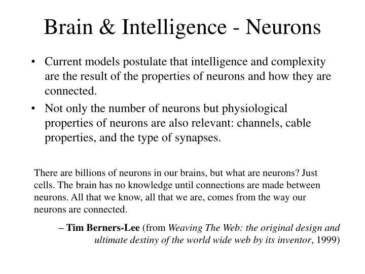 Brain & Intelligence - Neurons