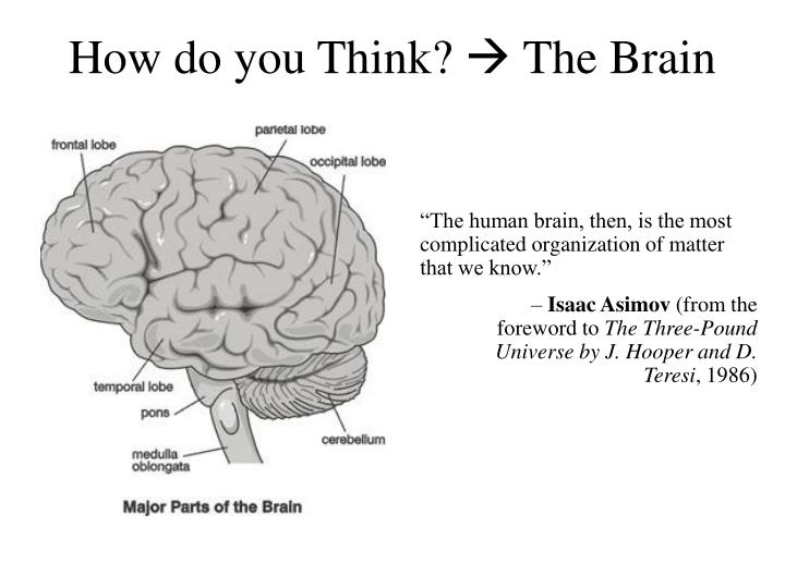 How do you Think?