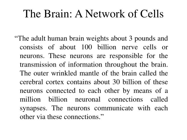 The Brain: A Network of Cells