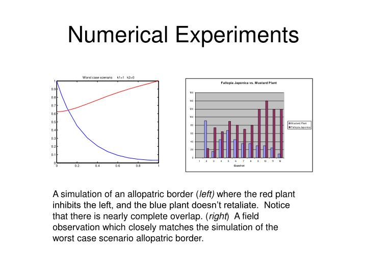 Numerical Experiments