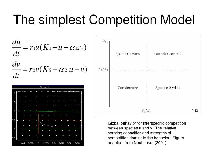The simplest Competition Model
