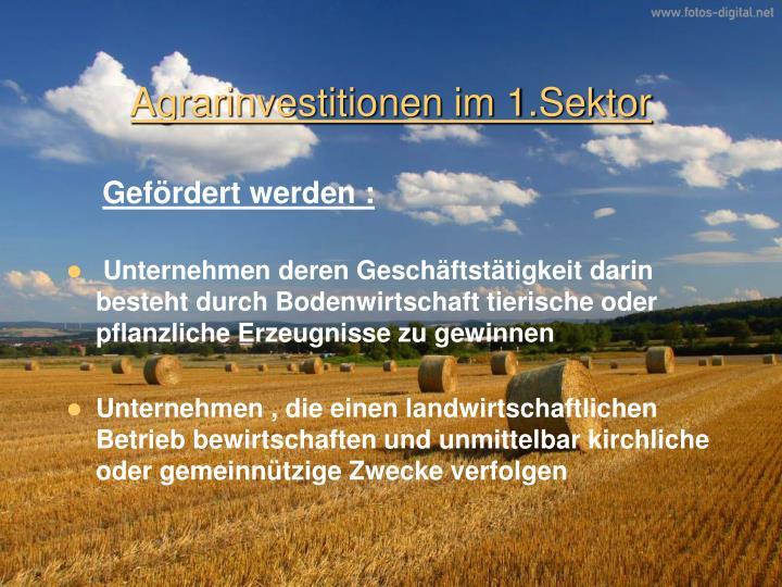 Agrarinvestitionen im 1.Sektor