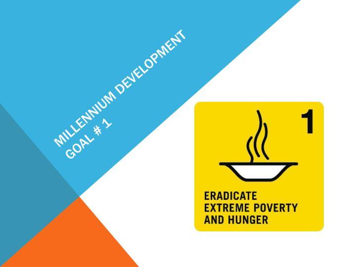 Millennium development goal # 1