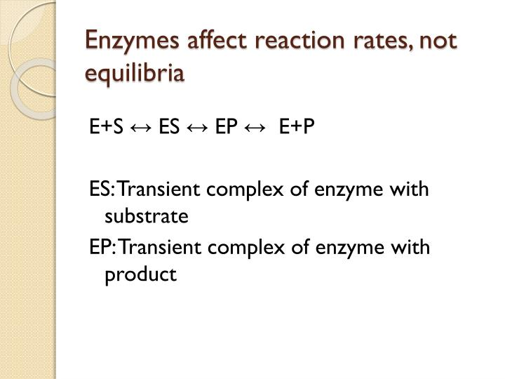 Enzymes affect reaction rates not equilibria