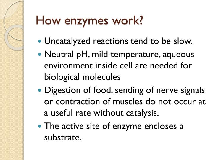 How enzymes work?