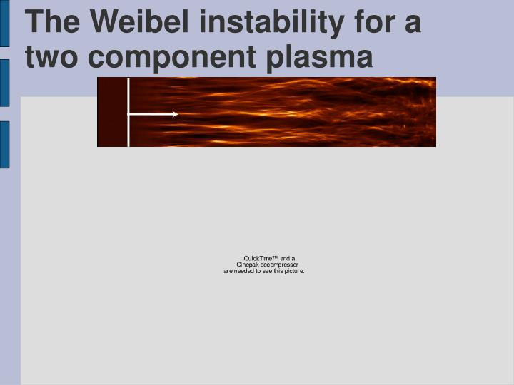 The Weibel instability for a two component plasma