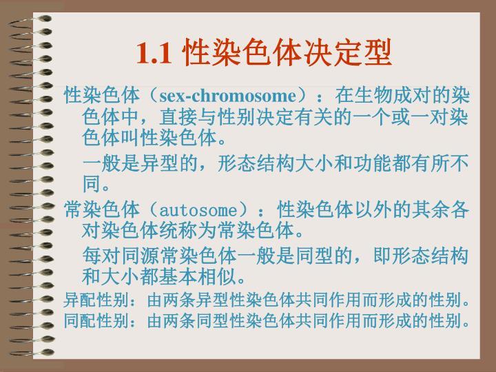 1.1 性染色体决定型