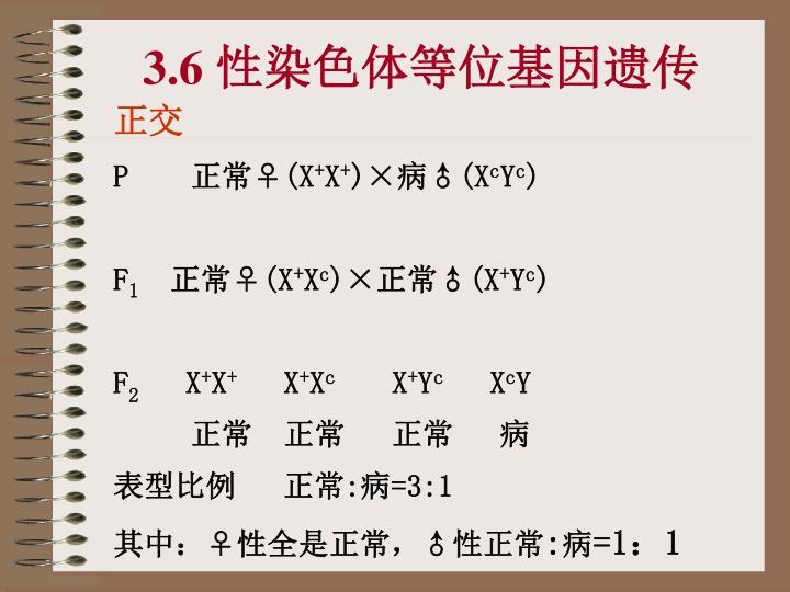 3.6 性染色体等位基因遗传