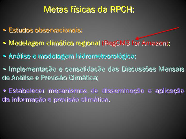 Metas físicas da RPCH:
