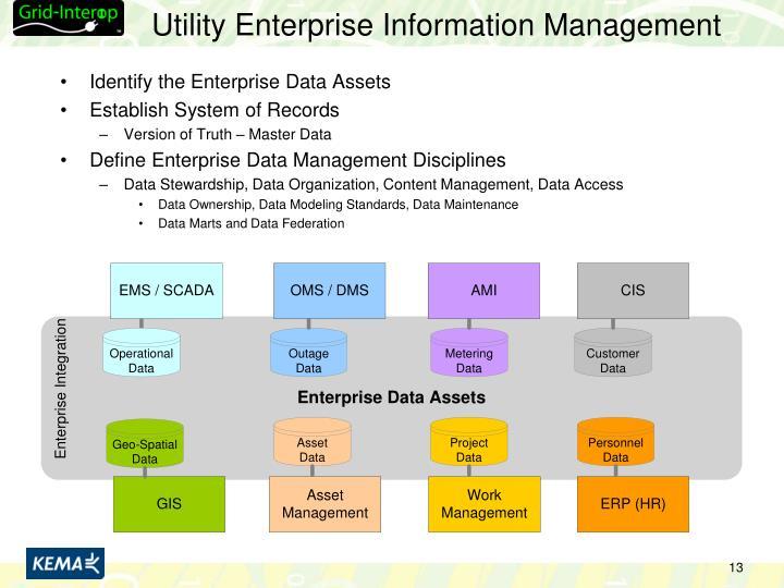 Utility Enterprise Information Management