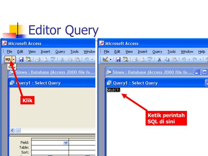 Editor Query