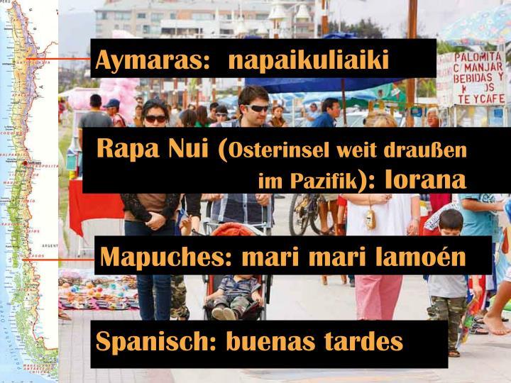 Aymaras:  napaikuliaiki