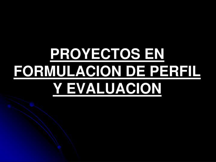 PROYECTOS EN FORMULACION DE PERFIL Y EVALUACION
