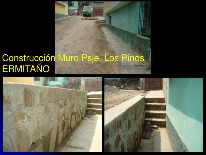 Construcción Muro Psje. Los Pinos