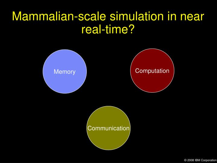 Mammalian-scale simulation in near real-time?