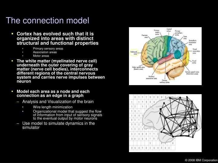 The connection model