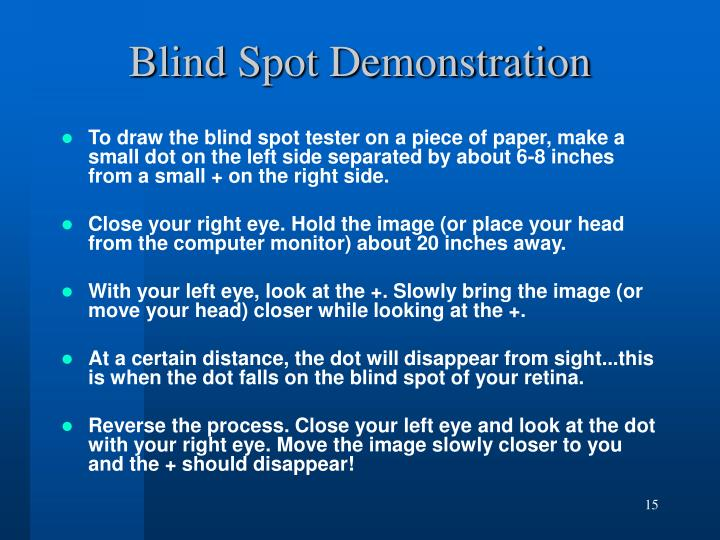 Blind Spot Demonstration