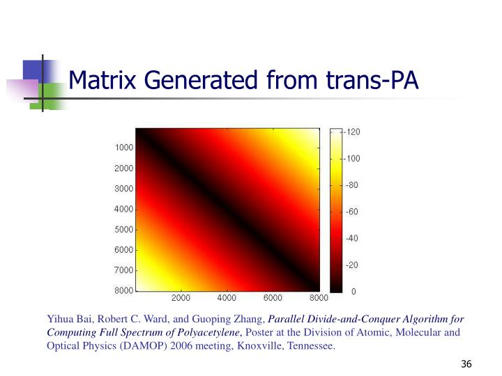 Matrix Generated from trans-PA
