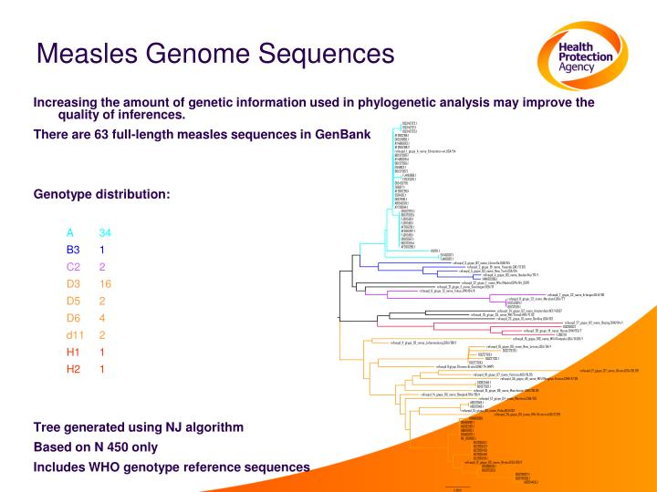 Measles Genome Sequences