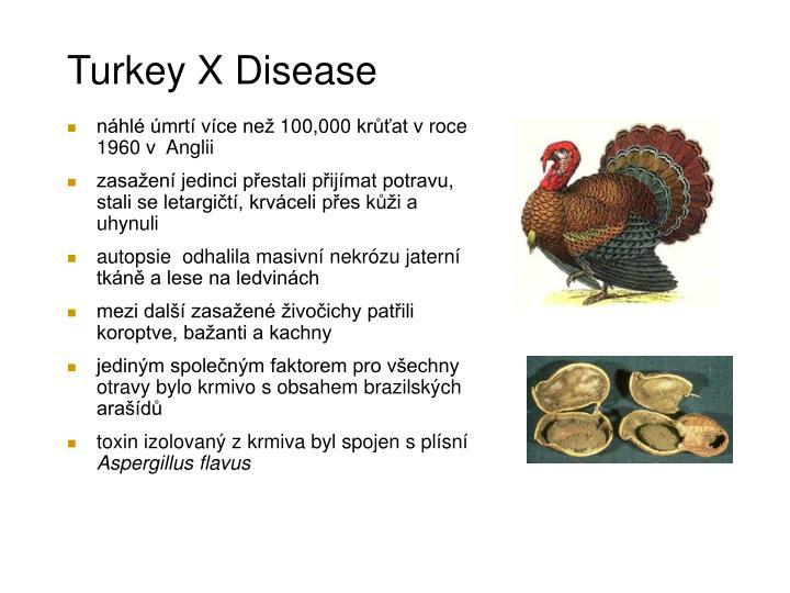 Turkey X Disease