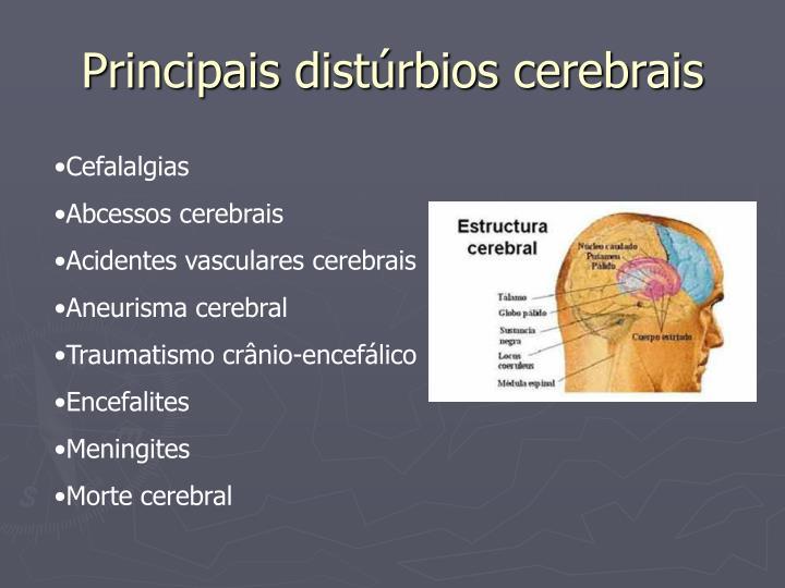 Principais distúrbios cerebrais